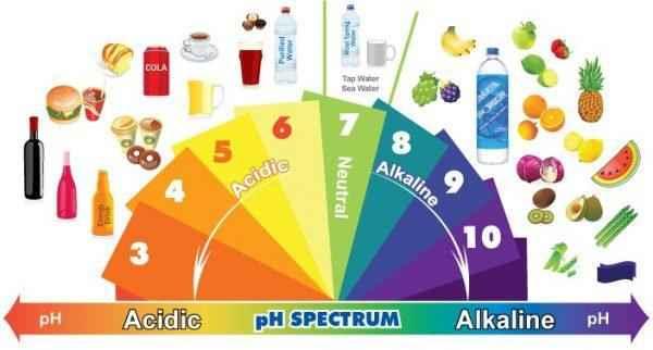 От рака, ожирения и болезней сердца вас спасут эти продукты! 11