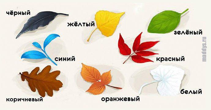 Тест на самопознание: выбери листочек и узнай что-то новое для себя... 1
